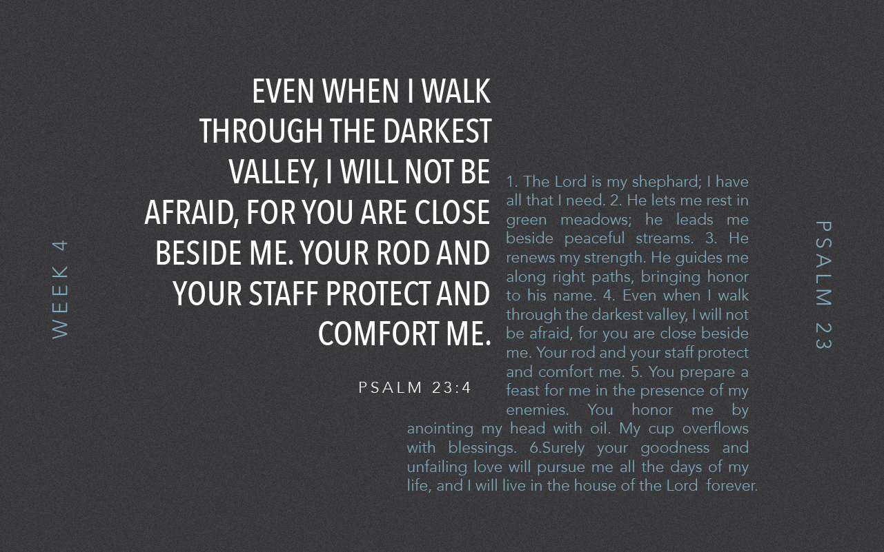 Psalm 23 // Day 18